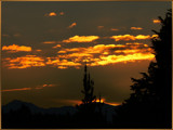 A Pine View by LynEve, Photography->Sunset/Rise gallery