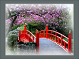 It's Cherry Blossom Time by LynEve, Photography->Bridges gallery