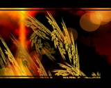 harvest by TRACYJTZ, Abstract->Fractal gallery
