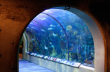Aquarium by rforres, Photography->Architecture gallery