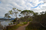 Merimbula Lake by flanno2610, photography->landscape gallery