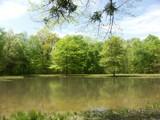 Bloody Pond by jojomercury, photography->landscape gallery