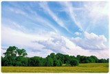 Early Summer by sharonva, photography->landscape gallery