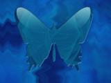 Butterfly over No Where by Temper, Abstract->Fractal gallery