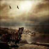 Here Comes Goodbye by rhinebeck, photography->manipulation gallery