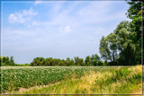 Simple Scene by corngrowth, photography->landscape gallery