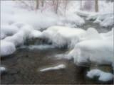 Frozen Marshmellows by mrpun46, Photography->Landscape gallery