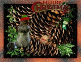 A Little Critters' Christmas by mesmerized, holidays->christmas gallery