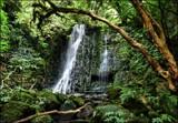 Southern Sights #19 - Matai Falls by LynEve, Photography->Waterfalls gallery