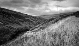 Woodhead pass by toxiccosmic, Photography->Landscape gallery