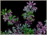 Meadow Flowers by Joanie, abstract->fractal gallery