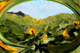 Sunflower Field by LynEve, photography->manipulation gallery