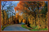 Walcheren Country Roads & Paths 14 by corngrowth, Photography->Nature gallery
