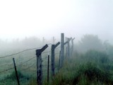 Fence and Fog by fotobob, Photography->Landscape gallery