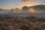 sunrise by japio, photography->landscape gallery