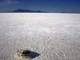 Desolation of the Salt Flats by Twistedlight, Photography->Landscape gallery