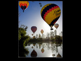 Balloon Invasion by Surfcat, Photography->Balloons gallery