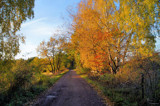 Pleasant October 3 by Inkeri, photography->landscape gallery