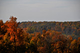 Ohio Colors by vangoughs, photography->landscape gallery