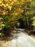 Golden Corridor by Pistos, Photography->Landscape gallery