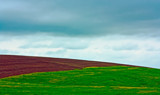 Field Trip by Eubeen, photography->landscape gallery