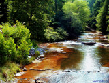 Tennessee Wayside Stream by adron, photography->landscape gallery