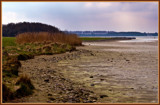 Low Tide 1 by corngrowth, Photography->Shorelines gallery