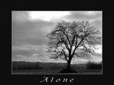 Lone Tree In B&W Series by verenabloo, Photography->Landscape gallery