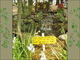 The Ugly Garden Sign by sandserene, Photography->Flowers gallery