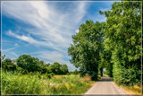 Just A Country Road by corngrowth, photography->landscape gallery