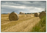 Fields of Hay 2 by slybri, Photography->Landscape gallery