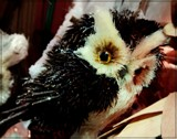 The Owl Tree by trixxie17, holidays->christmas gallery
