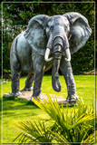 Jumbo by corngrowth, photography->sculpture gallery