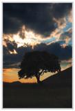 cds15 by ferit, Photography->Landscape gallery