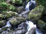 Mossy falls #1 by johnnyblaze187, photography->waterfalls gallery