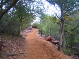 Green Arizona by soosool, Photography->Landscape gallery