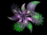 Emerald City Flower by jswgpb, Abstract->Fractal gallery