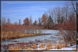 March Thaw 7 by Jimbobedsel, Photography->Landscape gallery