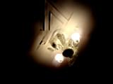 Illumination by sunnymay, Photography->Still life gallery