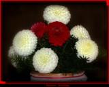 Seasons Greetings by tigger3, holidays->christmas gallery