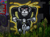 Going Ape by rvdb, photography->general gallery