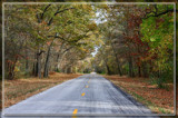 Follow The Yellow Lined Road by Jimbobedsel, photography->landscape gallery
