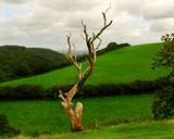 LANDMARK by LANJOCKEY, Photography->Landscape gallery