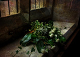 Church Bouquet by biffobear, photography->textures gallery