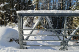 """Cold Steel"" - Bridge Railing by icedancer, photography->bridges gallery"