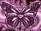 Fractal Butterly 2 by FractalsByRee, illustrations->digital gallery