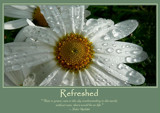 Refreshed Poster by LynEve, photography->flowers gallery