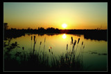 At the Swamp by JQ, Photography->Sunset/Rise gallery