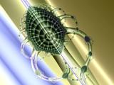 Virus Freeway by tealeaves, Abstract->Fractal gallery