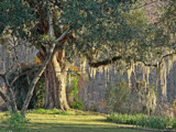 Southern Louisiana! by PatAndre, Photography->Landscape gallery
